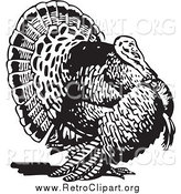 Clipart of a Retro Black and White Turkey Bird by BestVector