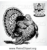 Clipart of a Retro Hungry Pilgrim and a Big Turkey Bird over Shading by BestVector