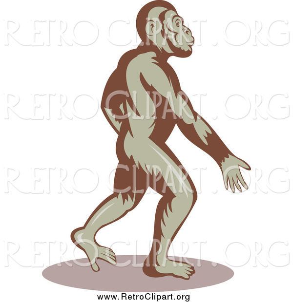 Clipart of a Ape Walking Upright