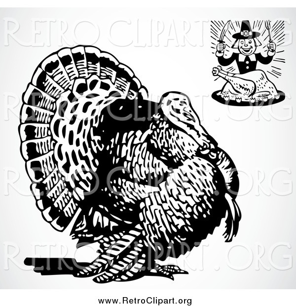 Clipart of a Retro Hungry Pilgrim and a Big Turkey Bird over Shading